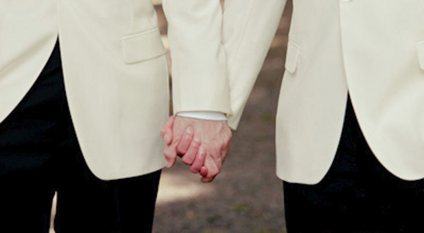 gay grooms hold hands