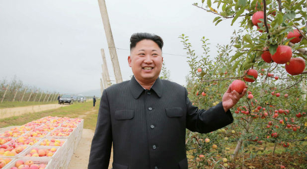 North Korean leader Kim Jong Un gives field guidance to the Kosan Combined Fruit Farm in this undated photo released by North Korea's Korean Central News Agency (KCNA) in Pyongyang.