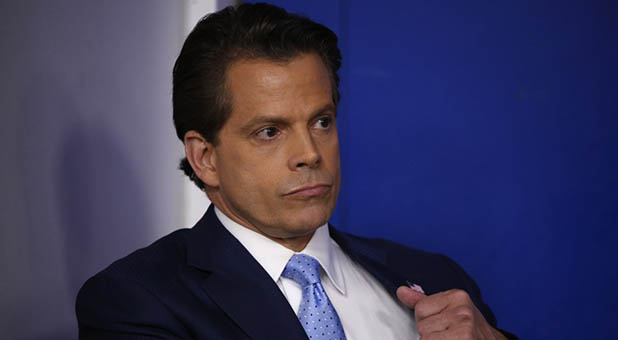 White House Communications Director Steve Scaramucci