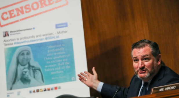 Senator Ted Cruz, R-Texas, shows a board before a Senate Judiciary Constitution Subcommittee.