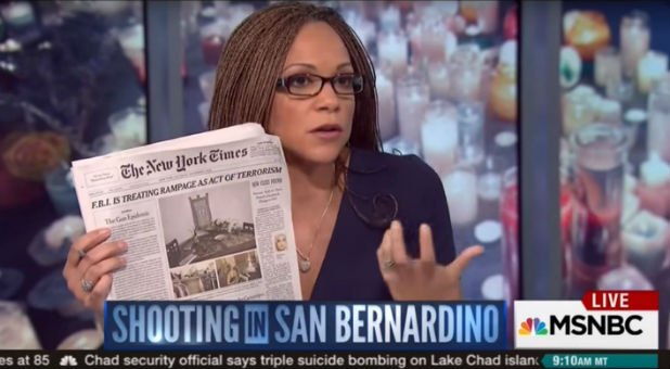 "MSNBC's Melissa Harris-Perry took home the ""Quote of the Year"" honor for scolding a guest who referred to Speaker-to-be Paul Ryan as a ""hard worker."""